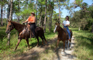 Riding the Seminole Ridge.